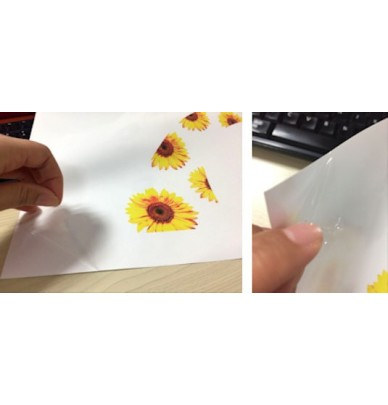 Blank Hydro Dipping Transfer Film for printing, 21cm or 30cm