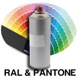 RAL paint spray