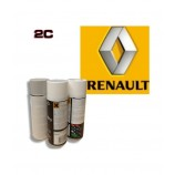 RENAULT 2K paint high gloss Spray Can – For All Auto Colour Codes