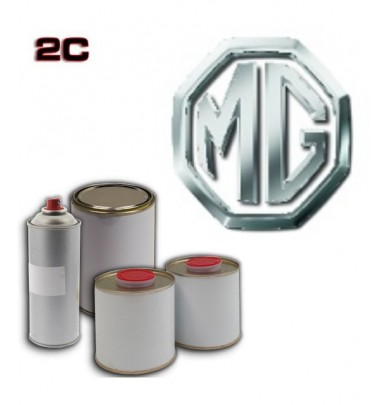 MG 2K POLYURETHANE PAINT in Pot – For All Auto Colour Codes