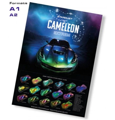 Poster Chameleon Extrem