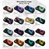 Chameleon Powder - All colors