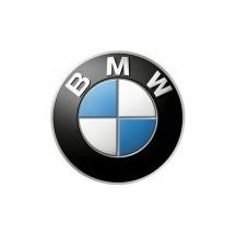 BMW PAINT