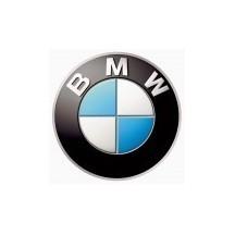 PAINT BMW
