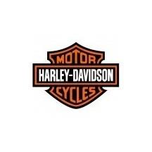 HARLEY-DAVIDSON PAINT