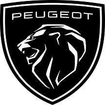 Peugeot scooter paint