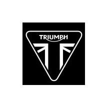 TRIUMPH PAINT